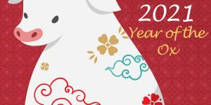 Happpy Chinese New Year from Bespoke Kitchen